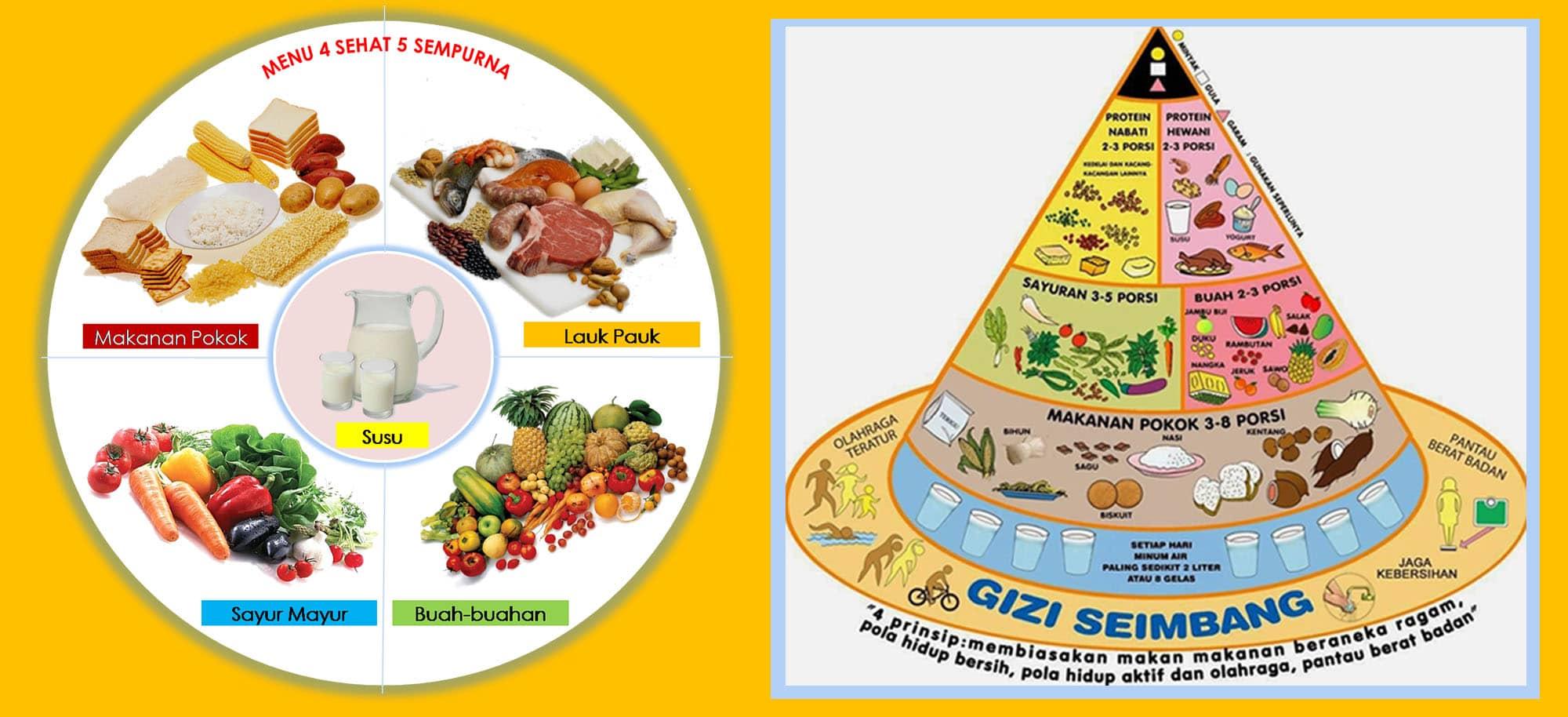 Piramida Makanan 4 Sehat 5 Sempurna Terlengkap Biology Co Id